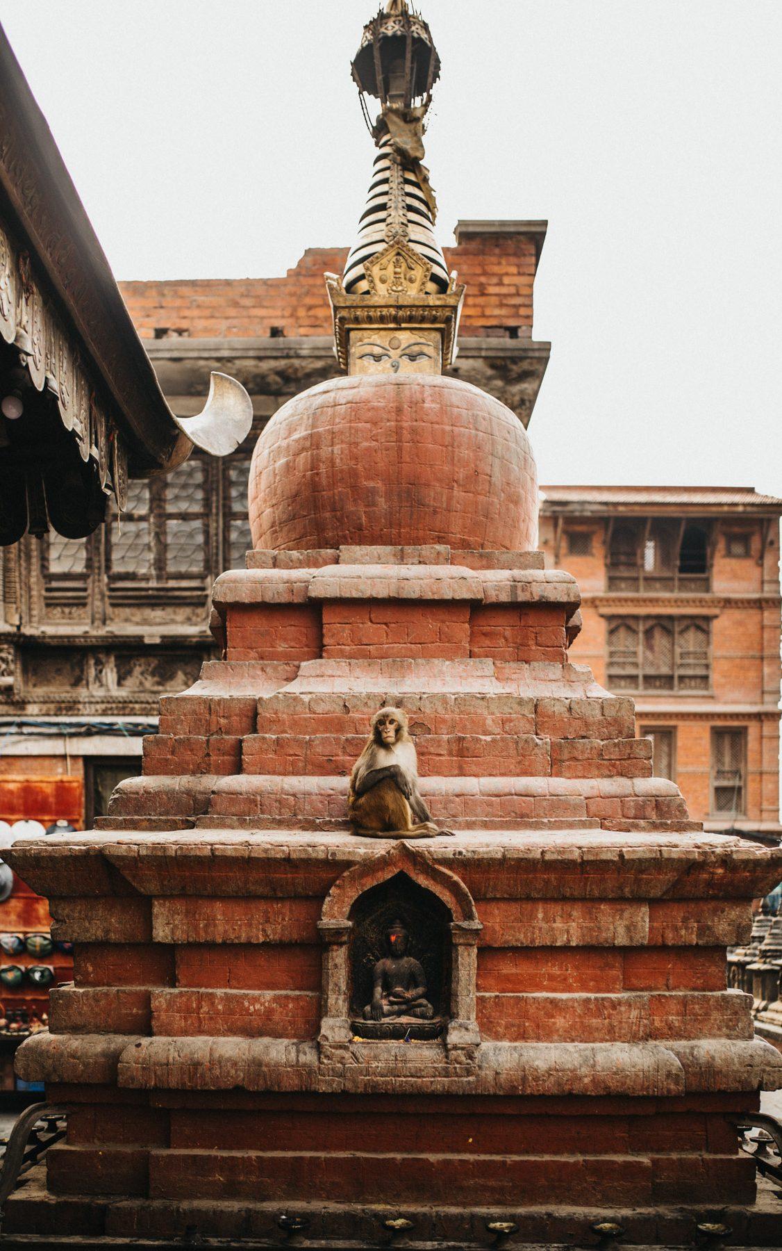 Nepal_Bloginhalt342A0608_0019