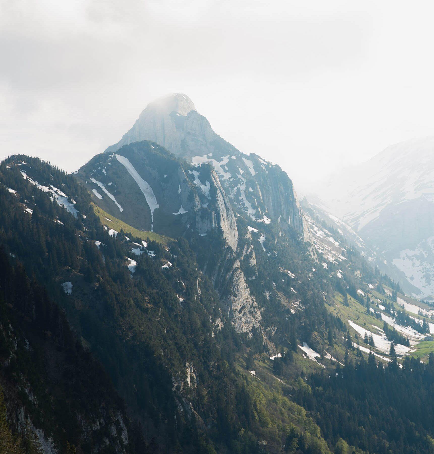 Website_Blog_Alps342A5580_0014