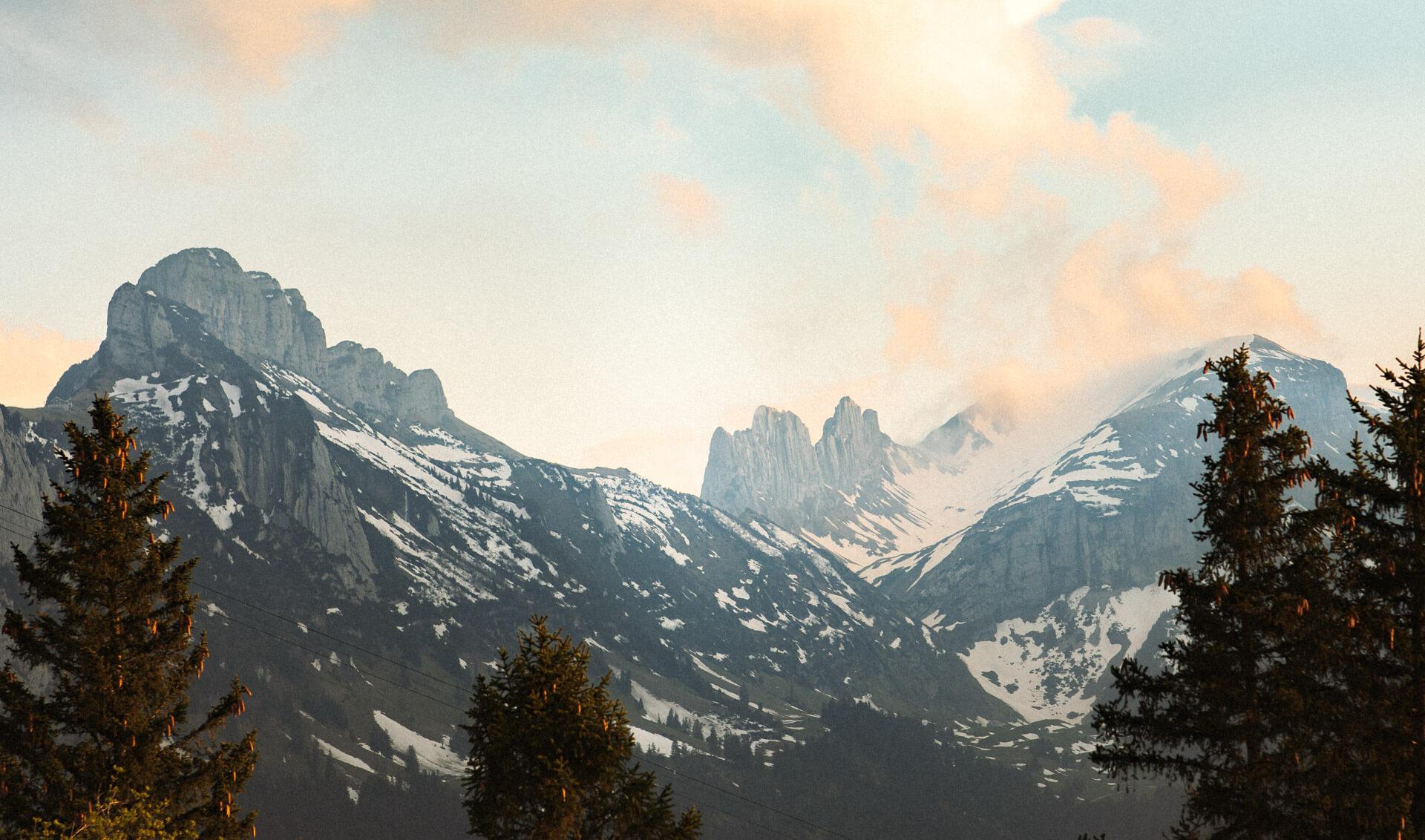 Website_Blog_Alps342A5686_0020